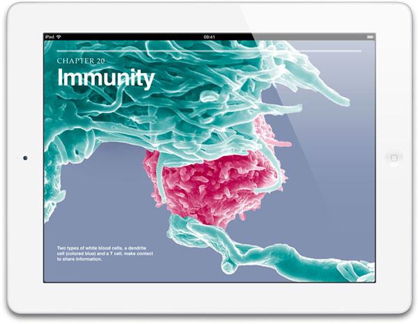 iPad 4 blanco